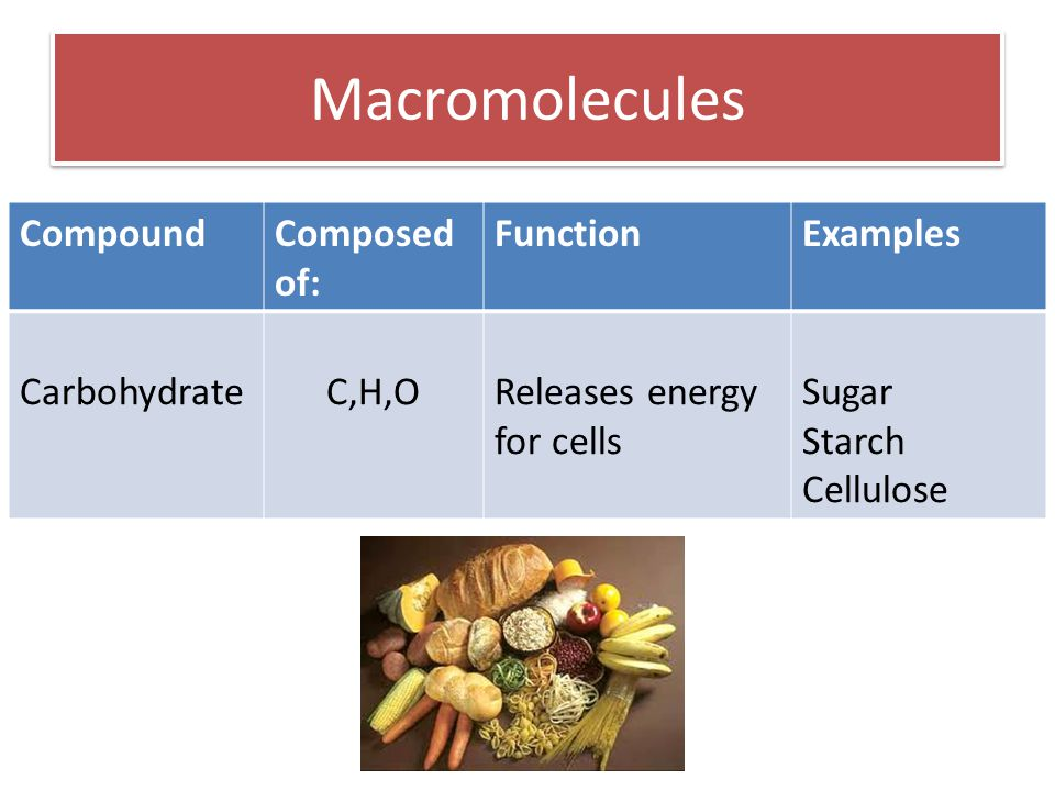 Macromolecules CompoundComposed of: FunctionExamples CarbohydrateC,H,OReleases energy for cells Sugar Starch Cellulose