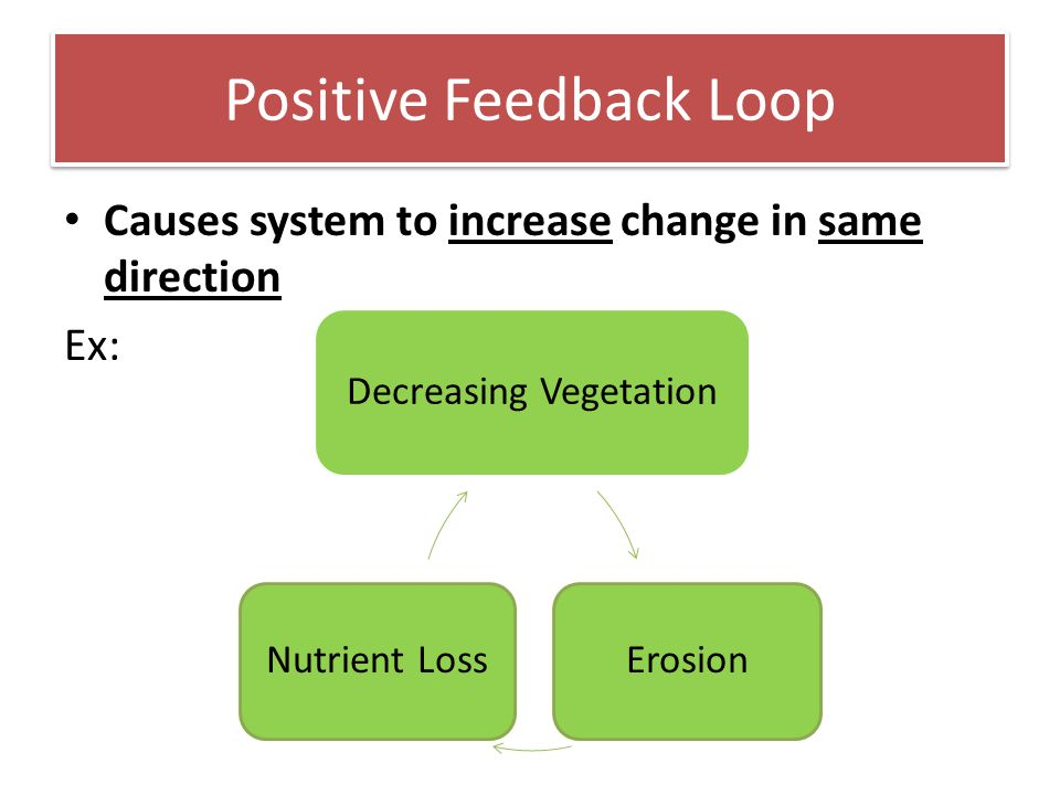 Positive Feedback Loop Causes system to increase change in same direction Ex: Decreasing Vegetation ErosionNutrient Loss