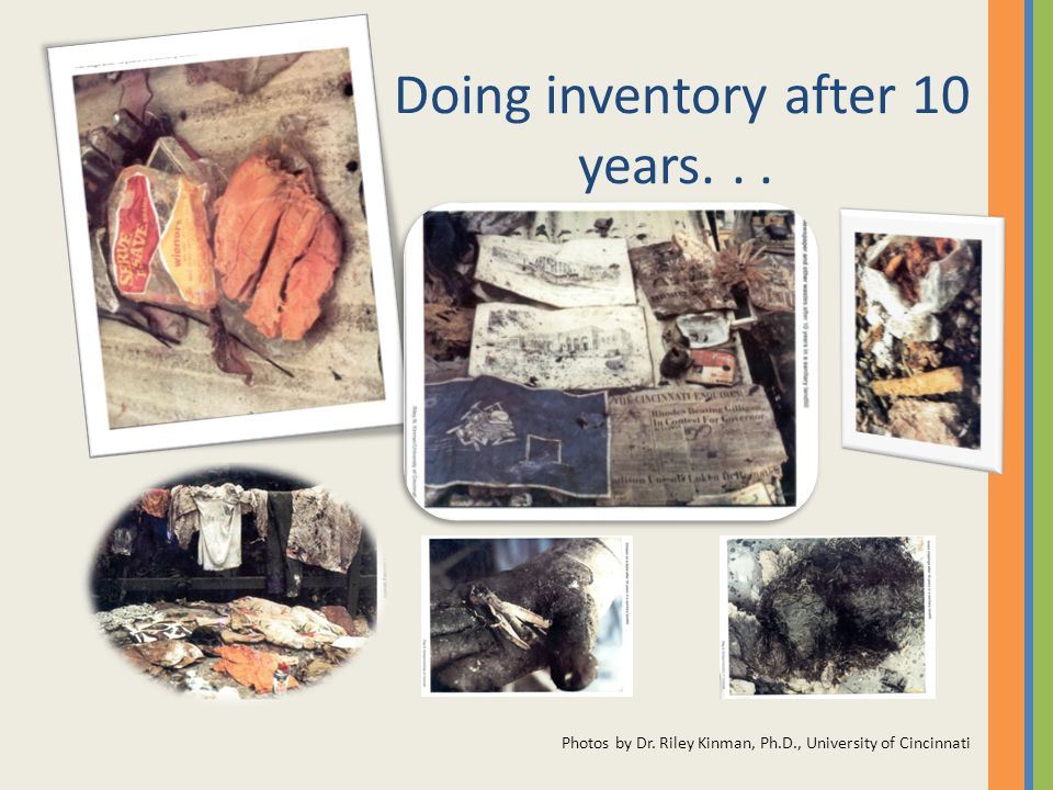 Doing inventory after 10 years... Photos by Dr. Riley Kinman, Ph.D., University of Cincinnati