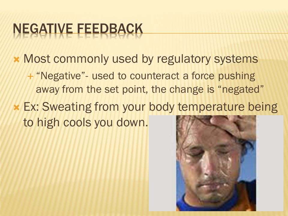 Most commonly used by regulatory systems  Negative - used to counteract a force pushing away from the set point, the change is negated  Ex: Sweating from your body temperature being to high cools you down.