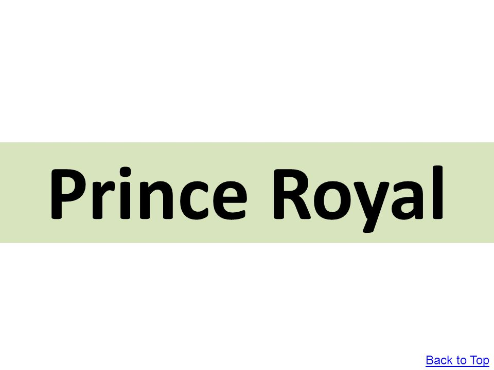Prince Royal Back to Top
