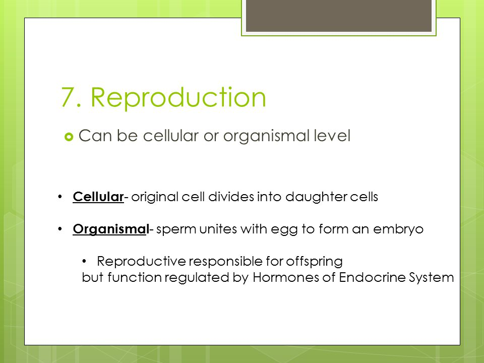 7. Reproduction  Can be cellular or organismal level Cellular - original cell divides into daughter cells Organismal - sperm unites with egg to form