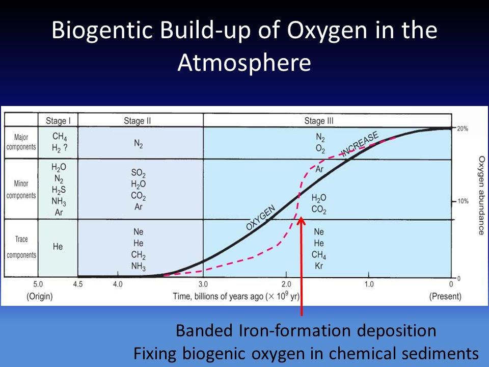 Biogentic Build-up of Oxygen in the Atmosphere Banded Iron-formation deposition Fixing biogenic oxygen in chemical sediments