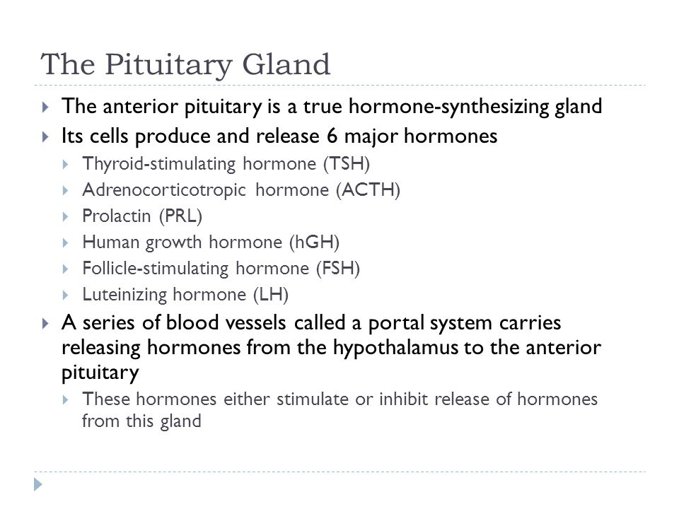 The Pituitary Gland  The anterior pituitary is a true hormone-synthesizing gland  Its cells produce and release 6 major hormones  Thyroid-stimulati