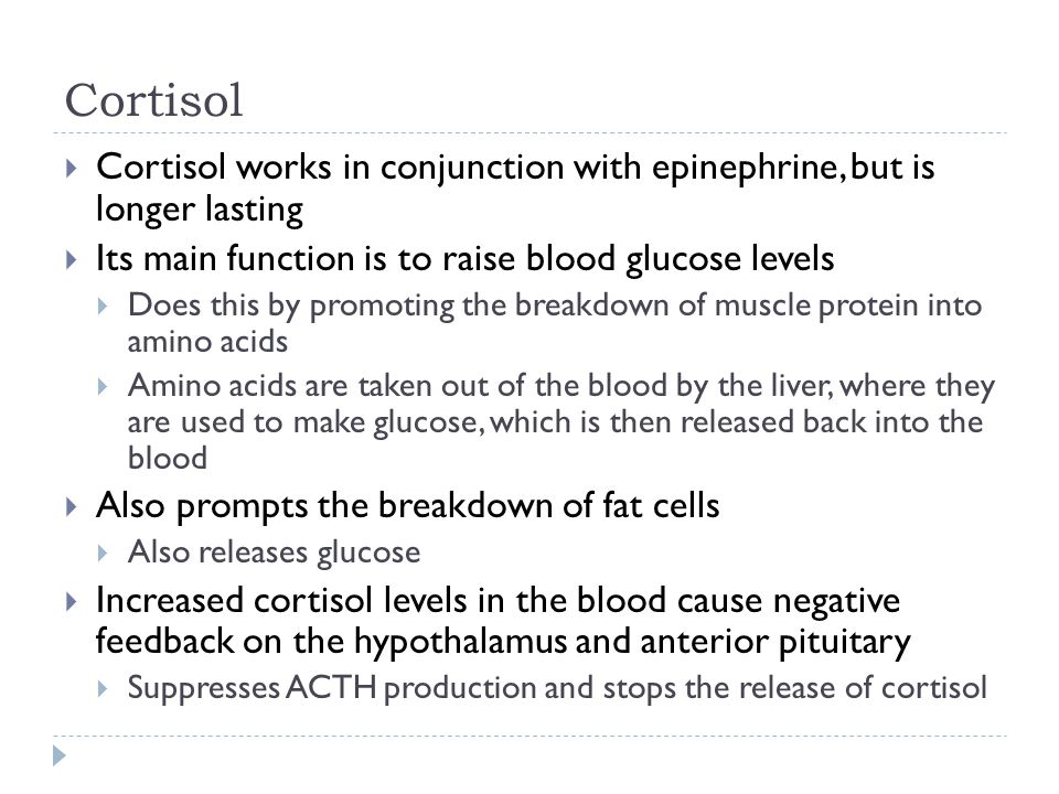 Cortisol  Cortisol works in conjunction with epinephrine, but is longer lasting  Its main function is to raise blood glucose levels  Does this by p