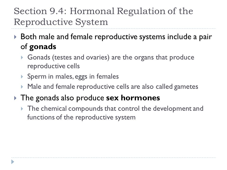Section 9.4: Hormonal Regulation of the Reproductive System  Both male and female reproductive systems include a pair of gonads  Gonads (testes and