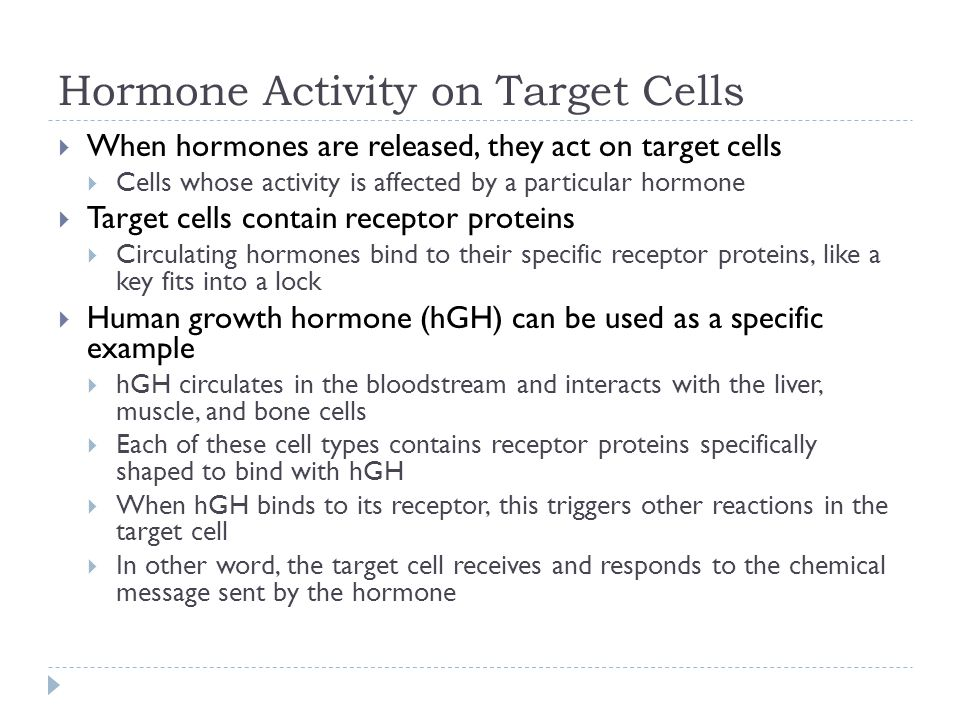 Hormone Activity on Target Cells  When hormones are released, they act on target cells  Cells whose activity is affected by a particular hormone  T