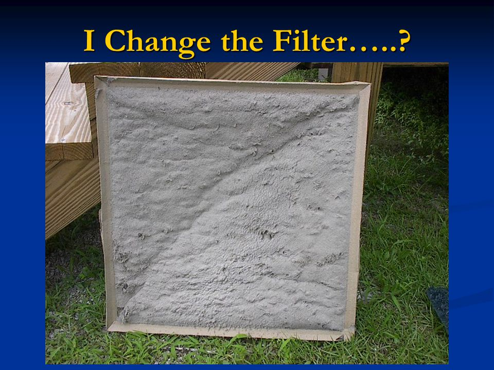 I Change the Filter…..