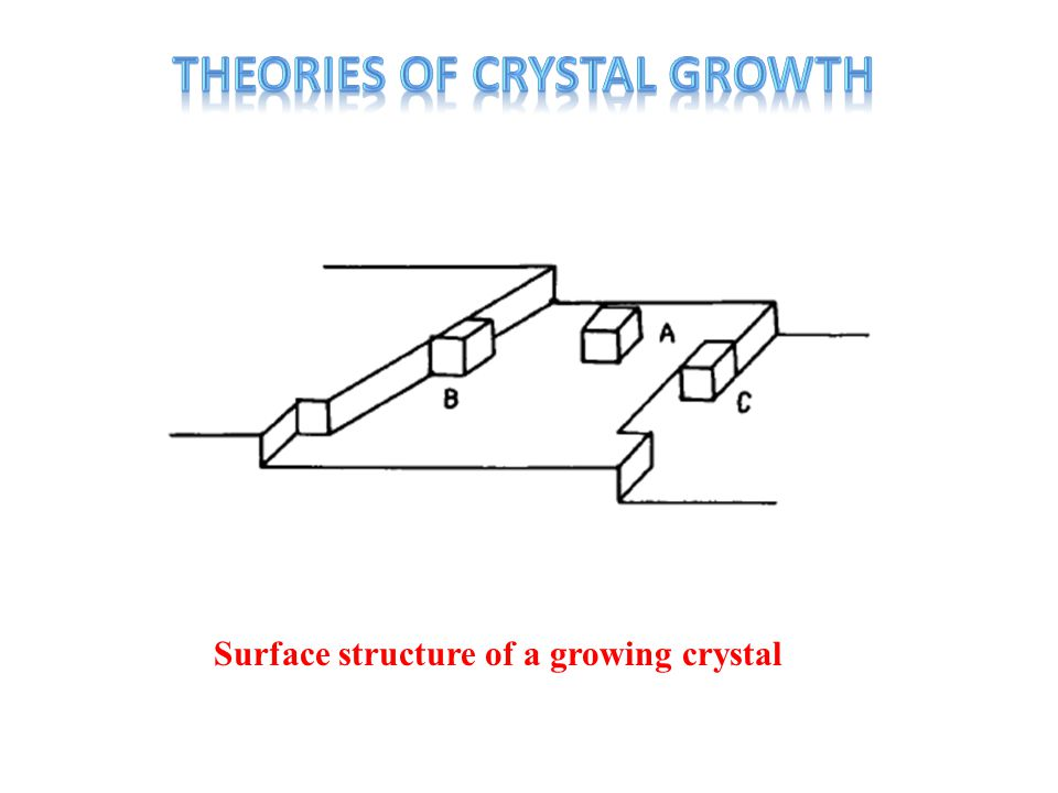 Surface structure of a growing crystal