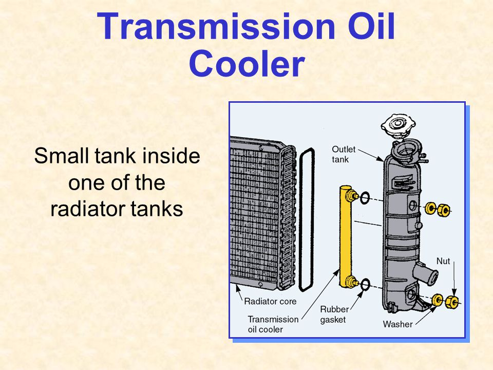 Transmission Oil Cooler Small tank inside one of the radiator tanks