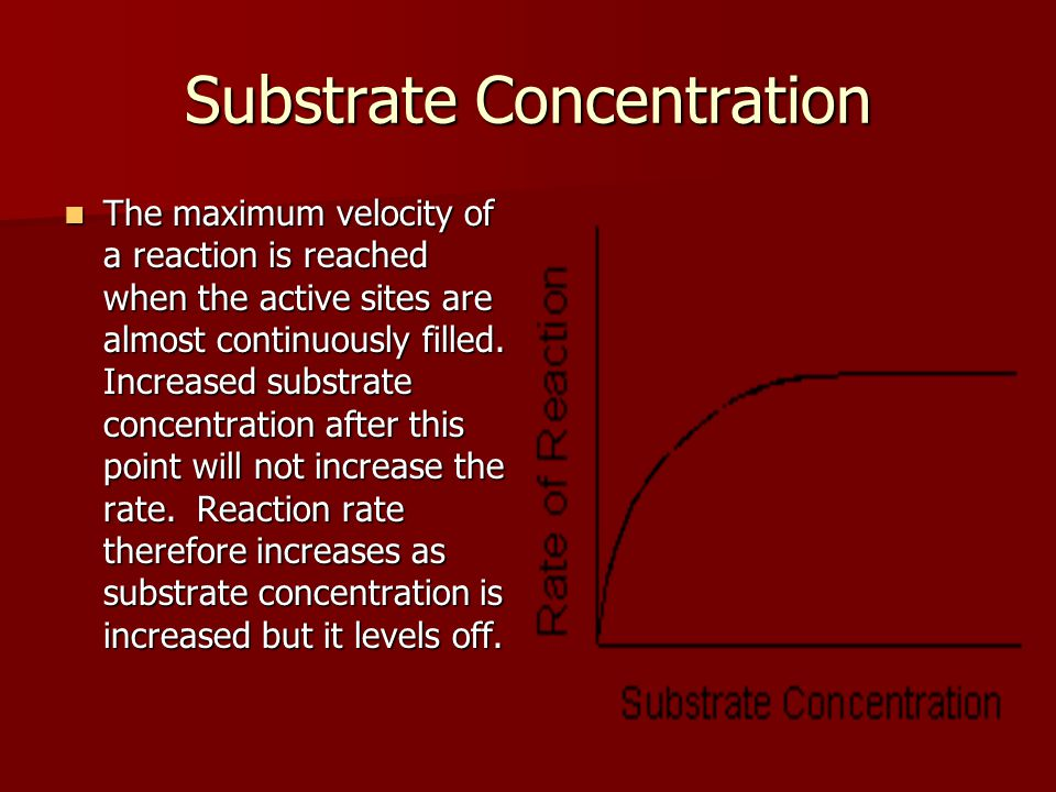 Substrate Concentration The maximum velocity of a reaction is reached when the active sites are almost continuously filled.