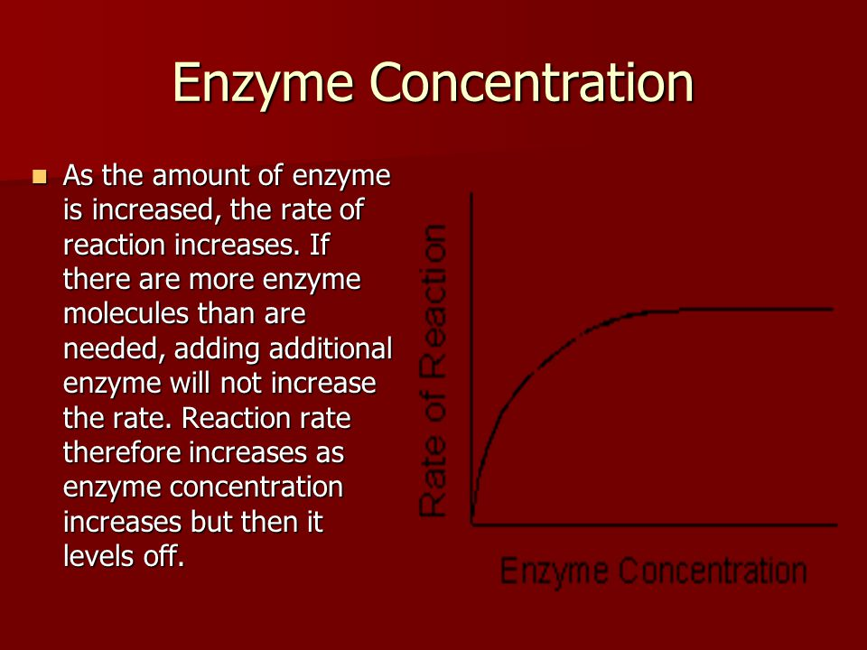 Enzyme Concentration As the amount of enzyme is increased, the rate of reaction increases.