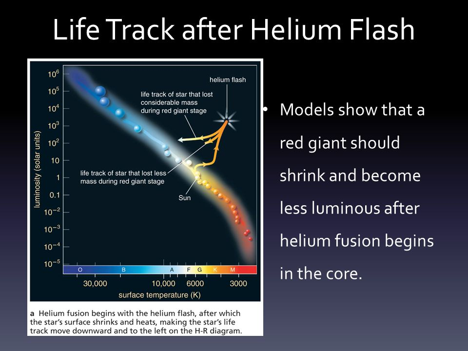 Life Track after Helium Flash Observations of star clusters agree with those models.