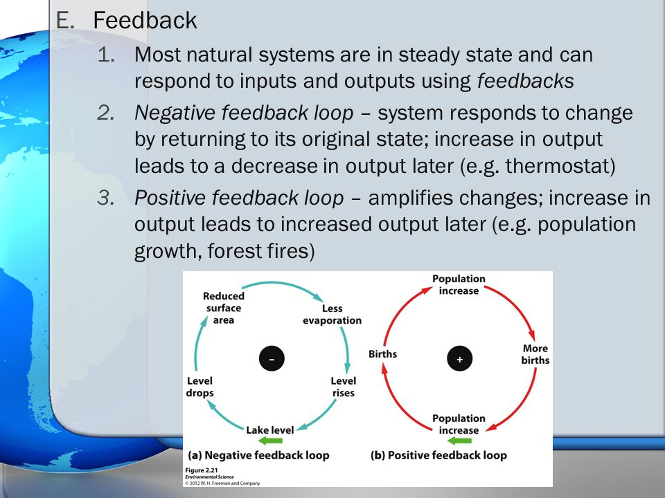 E.Feedback 1.Most natural systems are in steady state and can respond to inputs and outputs using feedbacks 2.Negative feedback loop – system responds to change by returning to its original state; increase in output leads to a decrease in output later (e.g.