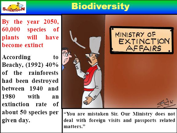 Biodiversity By the year 2050, 60,000 species of plants will have become extinct According to Beachy, (1992) 40% of the rainforests had been destroyed between 1940 and 1980 with an extinction rate of about 50 species per given day.