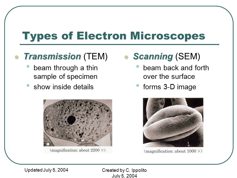 Updated July 5, 2004 Created by C. Ippolito July 5, 2004 Types of Electron Microscopes Transmission Transmission (TEM) beam through a thin sample of s