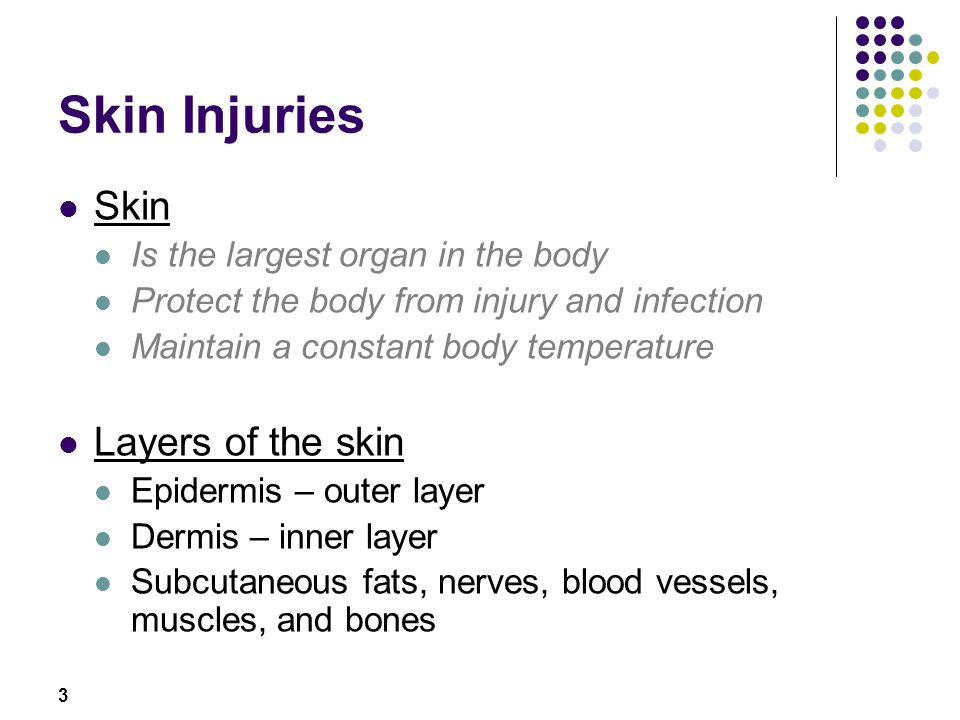 3 Skin Injuries Skin Is the largest organ in the body Protect the body from injury and infection Maintain a constant body temperature Layers of the sk