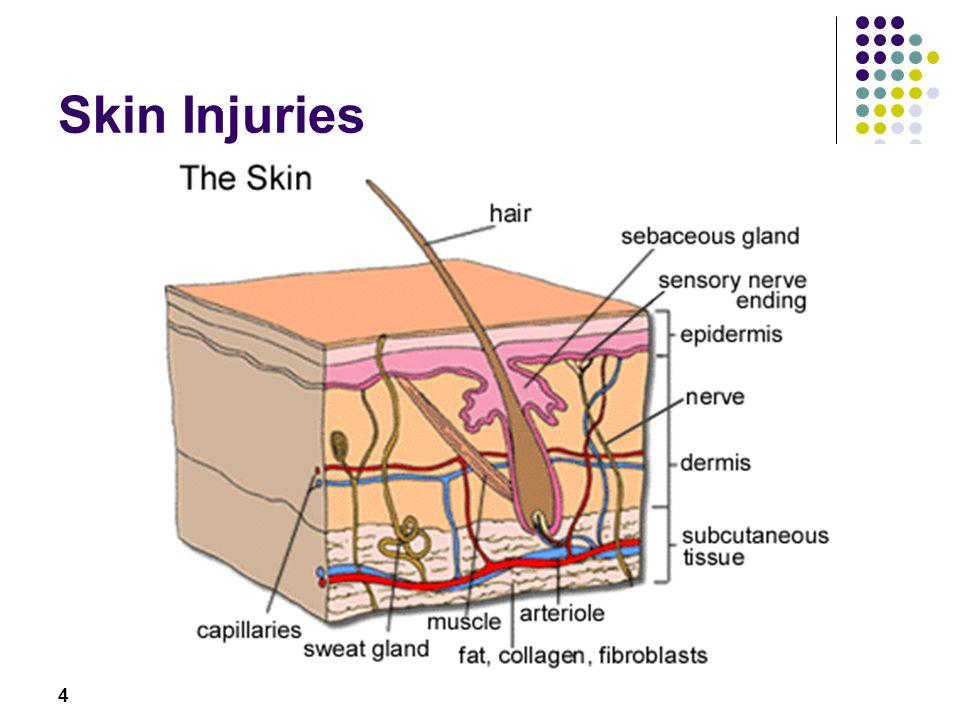 4 Skin Injuries
