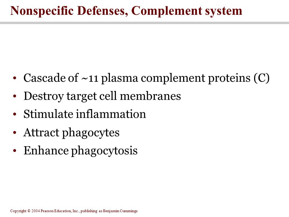 Copyright © 2004 Pearson Education, Inc., publishing as Benjamin Cummings Nonspecific Defenses, Complement system Cascade of ~11 plasma complement pro