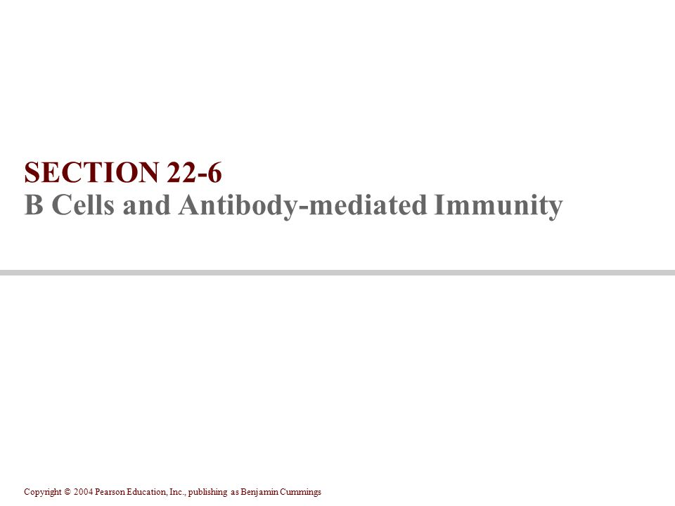 Copyright © 2004 Pearson Education, Inc., publishing as Benjamin Cummings SECTION 22-6 B Cells and Antibody-mediated Immunity