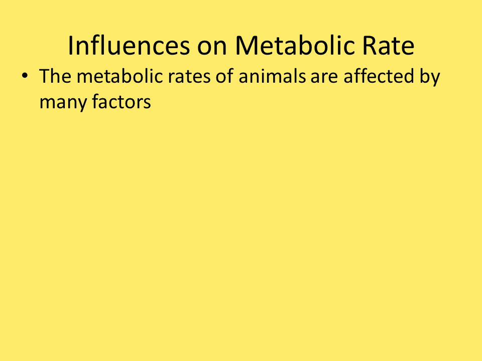 Influences on Metabolic Rate The metabolic rates of animals are affected by many factors