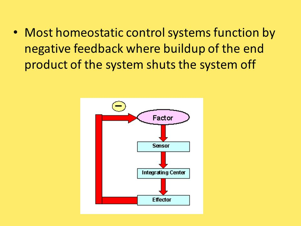 Most homeostatic control systems function by negative feedback where buildup of the end product of the system shuts the system off