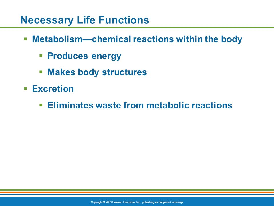 Copyright © 2009 Pearson Education, Inc., publishing as Benjamin Cummings Necessary Life Functions  Metabolism—chemical reactions within the body  Produces energy  Makes body structures  Excretion  Eliminates waste from metabolic reactions