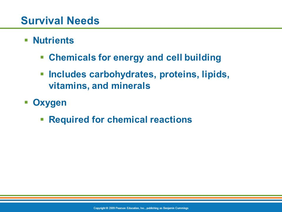 Copyright © 2009 Pearson Education, Inc., publishing as Benjamin Cummings Survival Needs  Nutrients  Chemicals for energy and cell building  Includes carbohydrates, proteins, lipids, vitamins, and minerals  Oxygen  Required for chemical reactions