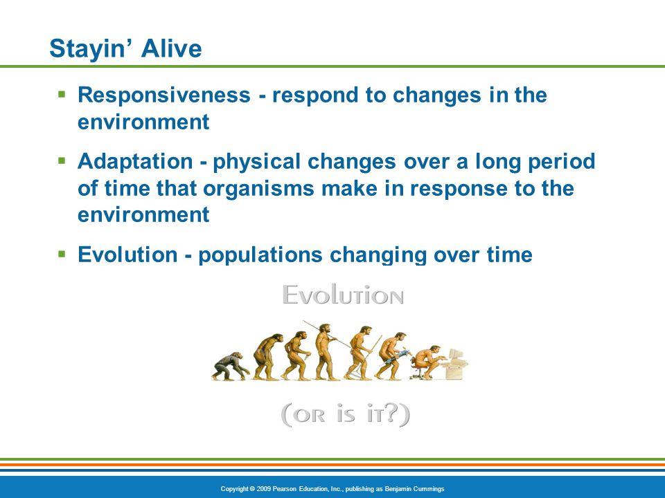 Copyright © 2009 Pearson Education, Inc., publishing as Benjamin Cummings Interrelationships Among Body Systems Figure 1.3