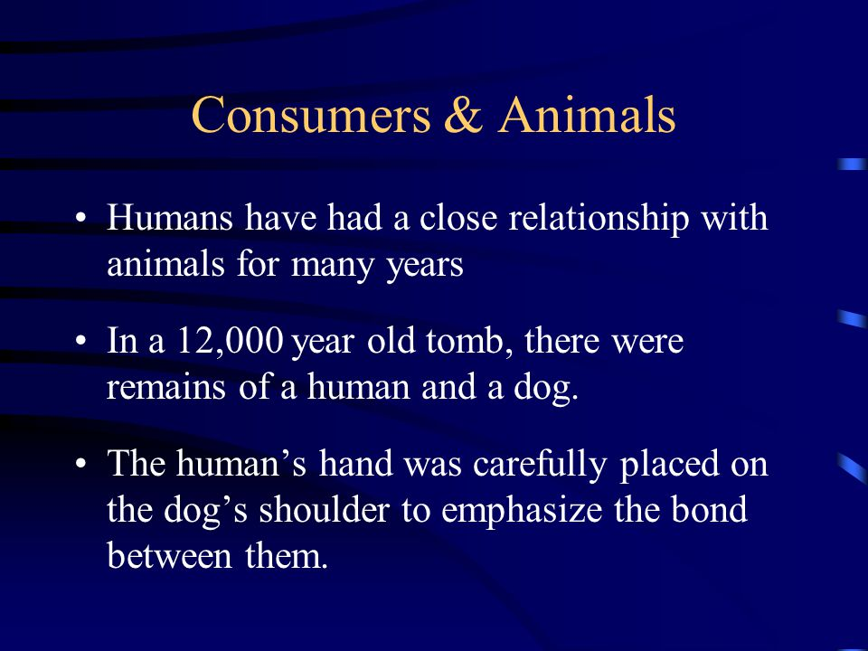 Consumers & Animals Humans have had a close relationship with animals for many years In a 12,000 year old tomb, there were remains of a human and a dog.