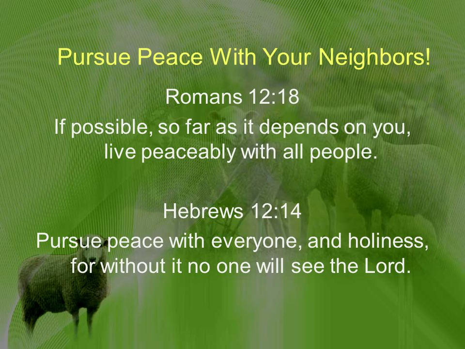 Pursue Peace With Your Neighbors.