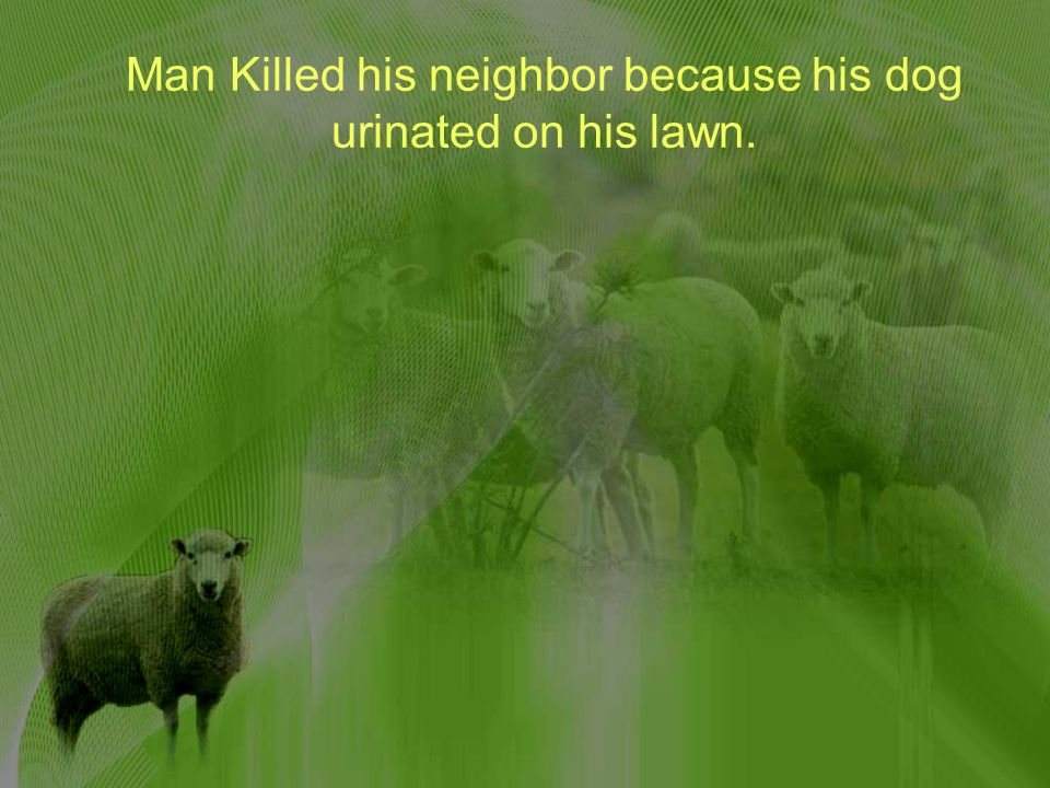 Man Killed his neighbor because his dog urinated on his lawn.