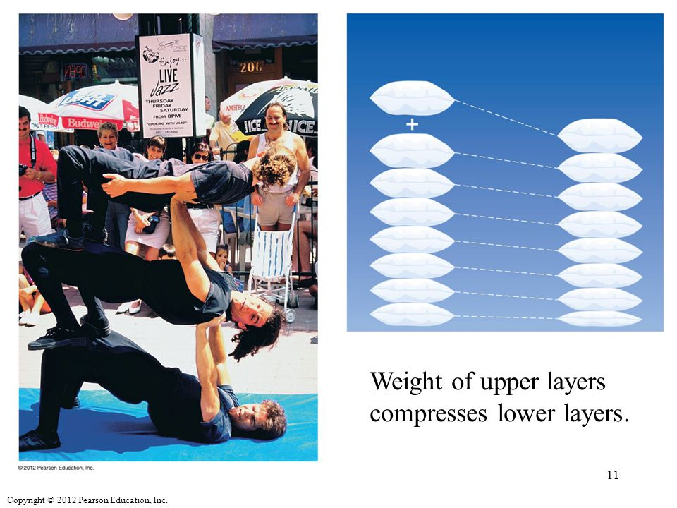 Copyright © 2012 Pearson Education, Inc. Weight of upper layers compresses lower layers. 11