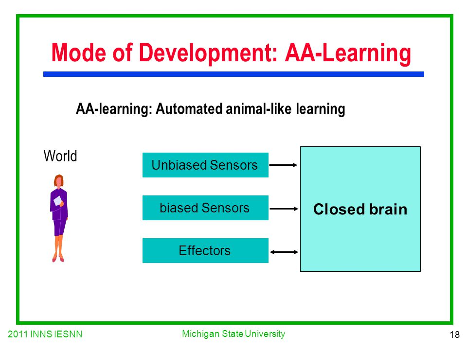 2011 INNS IESNN 18 Michigan State University Mode of Development: AA-Learning AA-learning: Automated animal-like learning Unbiased Sensors biased Sensors Effectors Closed brain World