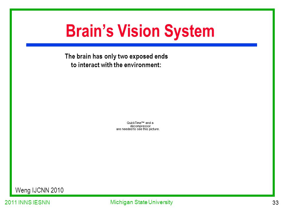 2011 INNS IESNN 33 Michigan State University Weng IJCNN 2010 The brain has only two exposed ends to interact with the environment: Brain's Vision Syst