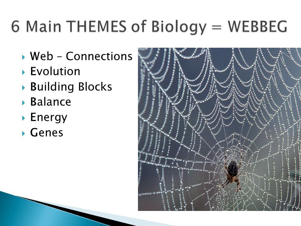  Web – Connections  Evolution  Building Blocks  Balance  Energy  Genes