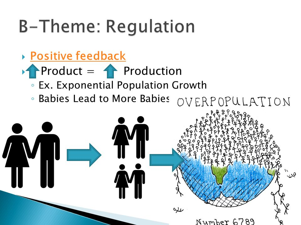  Positive feedback Positive feedback  Product = Production ◦ Ex. Exponential Population Growth ◦ Babies Lead to More Babies