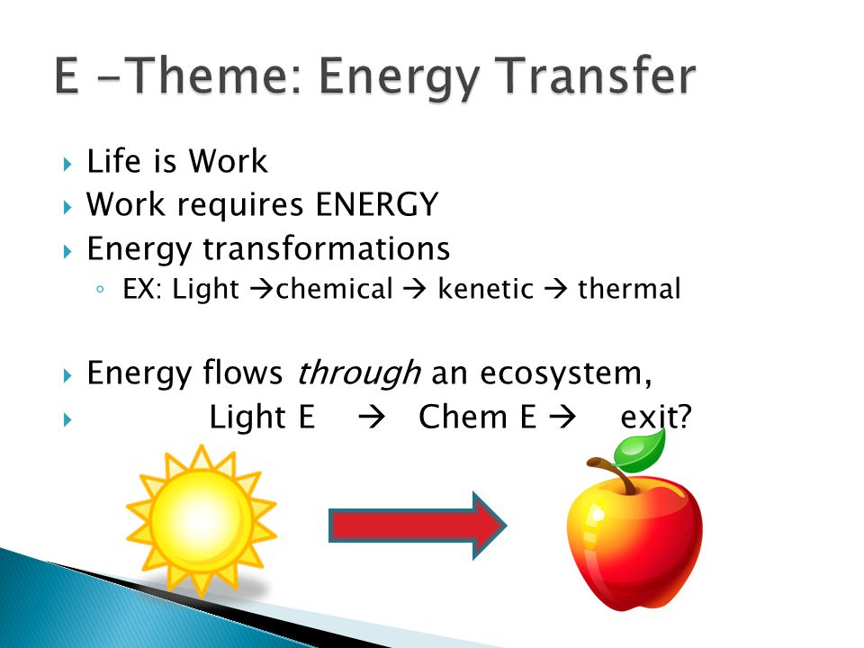  Life is Work  Work requires ENERGY  Energy transformations ◦ EX: Light  chemical  kenetic  thermal  Energy flows through an ecosystem,  Light