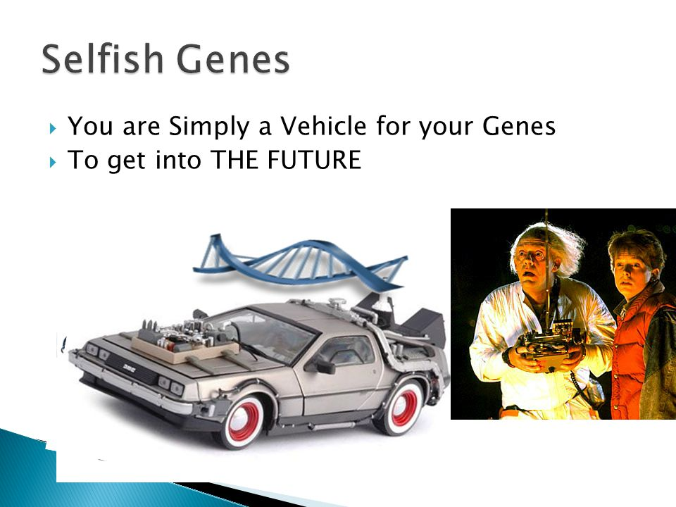  You are Simply a Vehicle for your Genes  To get into THE FUTURE