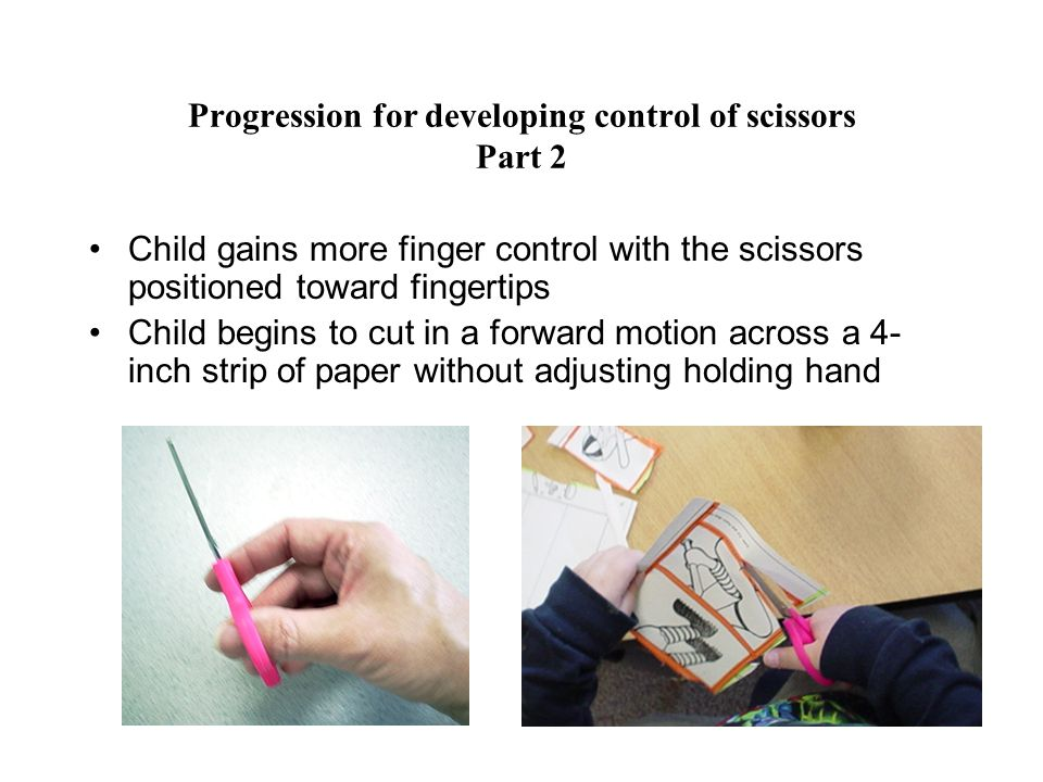 Progression for developing control of scissors Part 3 Child uses one hand to adjust paper while the other hand controls the scissors, cutting across an 8-inch wide piece of paper Move holding hand forward as the scissors pass