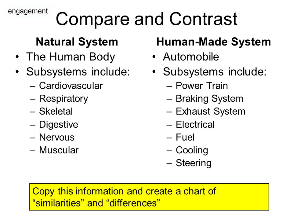 System Connections Technology systems can be connected to one another, both internally and externally.