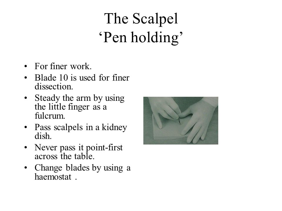 The Scalpel 'Pen holding' For finer work.Blade 10 is used for finer dissection.