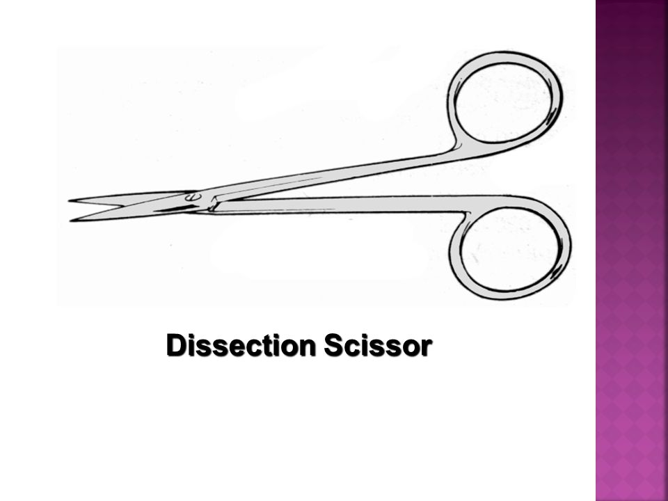 Dissection Scissor