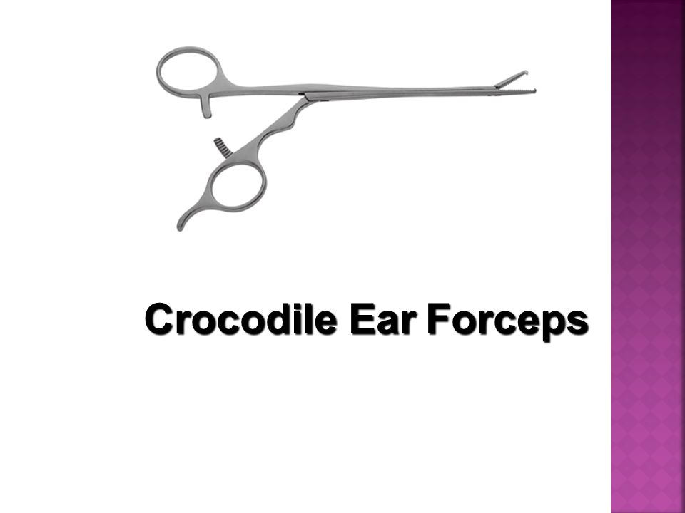 Crocodile EarForceps Crocodile Ear Forceps