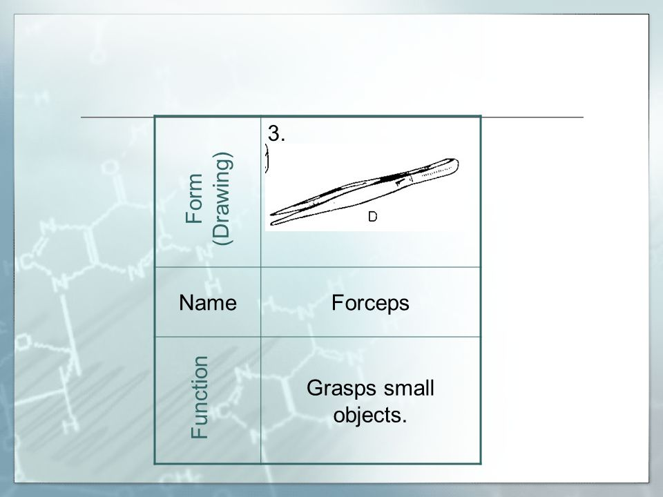 3. NameForceps Grasps small objects. Form (Drawing) Function