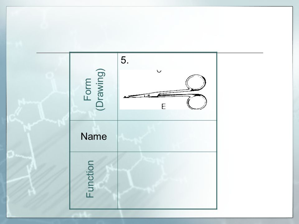 5. Name Form (Drawing) Function