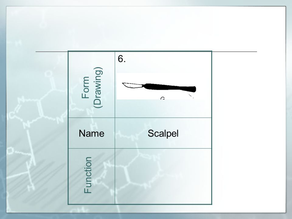 6. NameScalpel Form (Drawing) Function