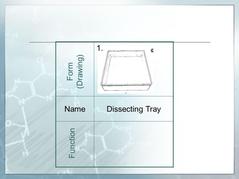 18. NamePetri Dish Form (Drawing) Function
