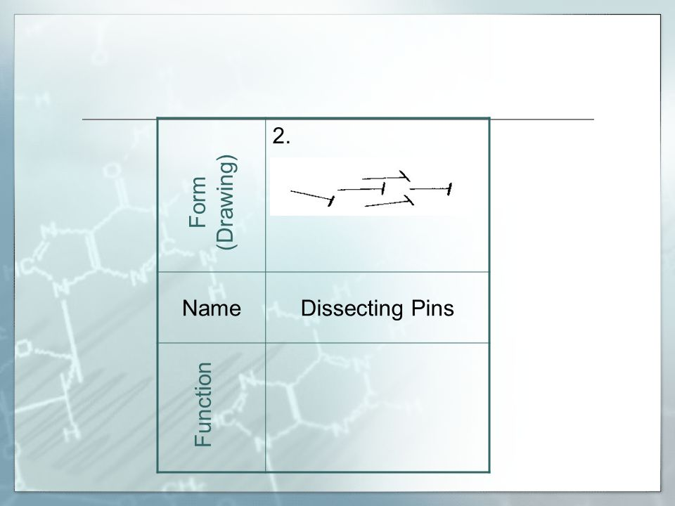 2. NameDissecting Pins Used to hold specimens on dissecting tray. Form (Drawing) Function