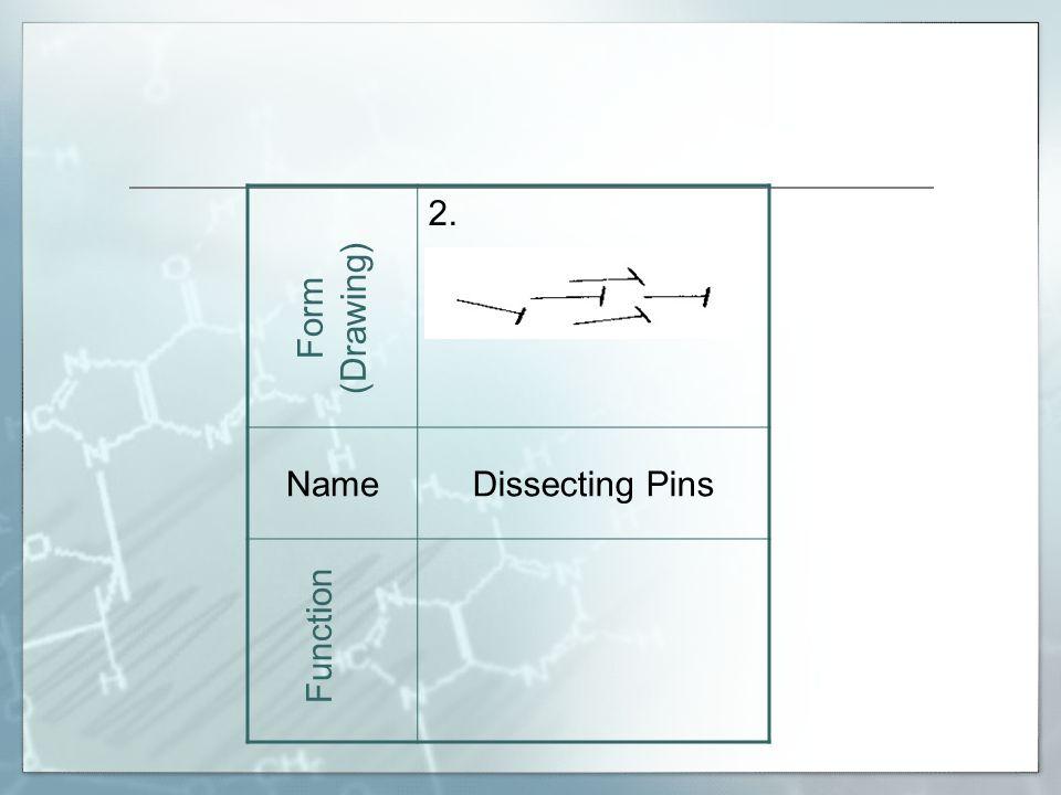 19. NameTriple Beam Balance Form (Drawing) Function